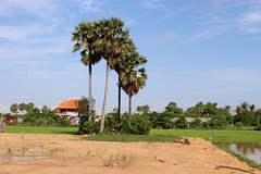 Siem Reap, Cambodia (Msimonin) Tags: cambodge cambodia asia siem reap angkor travel backpack architecture nature
