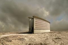 applying (Mattijn) Tags: architecture cat desert building geese