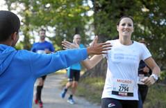 Hallwilerseelauf: Abklatschen macht den Halbmarathon kurzweiliger