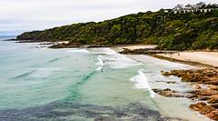longboard riders at First Bay, Coolum, Queensland, Australia (andrew.walker28) Tags: beach surf surfing longboard waves swell ocean seaside water coast coolum queensland australia