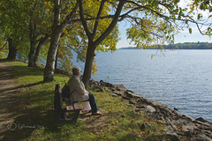 A Rest Spot Over The Ottawa River (Jeannot7) Tags: montebello ottawariver qubec fall autumn trees