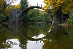 Evolution (elle.jimmy) Tags: kromlau rakotz bridge reflection circle autumn color