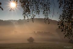 Morning fog (Zaphod Beeblebrox 1970) Tags: autumn deutschland fog gegenlicht germany herbst landscape mist morgensonne nebel nrw sonne sprockhvel sun