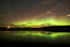 August 30 Aurora on the Hidden Loch (John Andersen (JPAndersen images)) Tags: airdrie aurora calgary loch night pond reflections