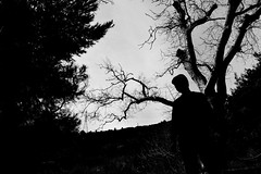 you are not alone (Sali_Boom) Tags: shadow man forest scary trees