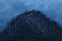 Grey (oliver.schmitter) Tags: wood wald cabin htte schwyz switzerland nebel rigi grau grey mist kalt mountains berge schweiz dezember