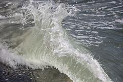 161015-7205-SeaWall (Sterne Slaven) Tags: plimothplantation roosters spiderwebs oldburialhill pilgrims clamdiggers sanddunes barnstable taunton salem lynn sexynude sunhalo fullmoon sterneslaven tide waves water fountain 1600s wampanoag mayflower pelt harbor chathamma seals ocean atlanticocean coastal newengland actors
