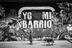 Yo amo mi barrio (hapePHOTOGRAPHIX) Tags: 858uru américadelsur fujix100 kunst montevideo southamerica streetart südamerika uruguay ciudad hapephotographix stadt strasenszene streetphotography urban graffiti wallaort wandgemälde hund dog perro altermann oldman viejohombre schwarzweiss blackandwhite blancoynegro bnw sw departamentodemontevideo uy