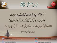 21-11-16) dz group (zaitoon.tv) Tags: mohammad prophet islamic hadees hadith ahadees islam namaz quran nabi zikar