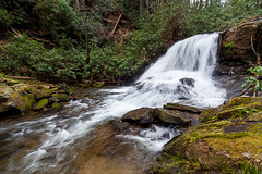 Wildcat Creek (John Cothron) Tags: 15mm 35mmformat 5dmarkii 5d2 5dii 5dmkii americansouth cpl canoneos5dmkii carlzeiss chattahoocheeoconeenationalforest clarkesville cothronphotography distagon1528ze dixie georgia johncothron lakeburtonwma rabuncounty southatlanticstates southernregion thesouth us usa unitedstatesofamerica wildcatcreek wildcatcreekfalls wildcatcreekroad zeissdistagont2815mmze circularpolarizingfilter clouds cloudyweather creek digital environment falling flowing forest freshwater landscape morninglight moss nature outdoor protected river rock scenic spring stream water waterfall img13544160326 ©johncothron