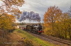 Autumnal Steam (Nimbus20) Tags: bluebellrailway sussex eastsussex railway preserved mausell qclass trainsteam autumn leaves leaf colours clouds sunshine grass rail track ballast trees england britain