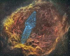 Ou4 the Giant Squid Nebula (www.swiftsastro.com) Tags: astrophotography nebula stelle stars nebulosa astronomia astronomy astrofotografia takahashi star astro astrodon avalon cosmos dso deep space nebulosity nebulae sky skies universe texture cloud ederblad sharpless creation sxvrh18 eq6 skywatcher mn190 starlight xpress emission cepheus night hubble qhy5 phd baader deepspace moonrocks abstract surreal outdoor landscape swift 10micron vixen vsd cassiopeia soul lunar messier valencia spain españa paramount astrometrydotnet:id=nova1842961 astrometrydotnet:status=solved