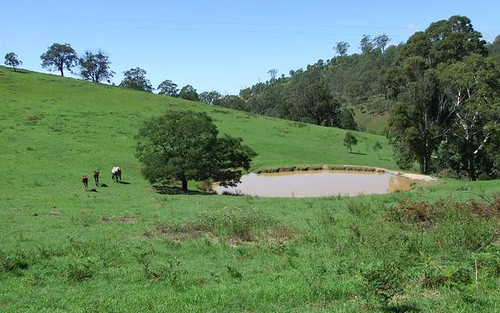 Lot 262 Mount Pleasant Road, Bega NSW 2550