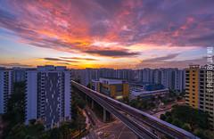 burning sky,morning everyone (jaywu429) Tags: sony singapore sonya7r sky skyline sonycamera sony1635mmf4 sunrise clouds cloud neighbothood explore inexplore hdr landscape hdb cityscape outdoor buildings burning train
