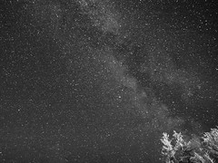 The Way Of Milk (Andrei Apetrei) Tags: night nightsky skyphotography star starry galaxy mountain holiday outdoor nature trees vsco vscofilm blackandwhite milkyway milk infinite romania sky summer clearsky quite iso canon tamron landscape hike adventure beyond