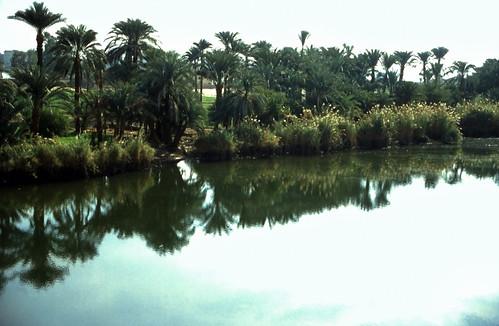 "Ägypten 1999 (498) Theben-West: Neu-Gurna • <a style=""font-size:0.8em;"" href=""http://www.flickr.com/photos/69570948@N04/31055303015/"" target=""_blank"">View on Flickr</a>"