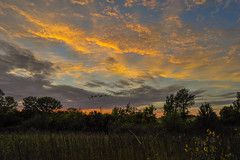 Neat Sunset 3 -- with Geese (thefisch1) Tags: sunset color colorful sky cloud alto cumulus horizon tree line geese flying formation nikon kansas d700