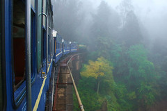 toy train to Ooty (http://www.guidogavazzi.it/enghome.html) Tags: train india ooty mountain rail bridge