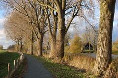 Koewachtershuisje, Gat van den Ham, Hooge Zwaluwe (JdRweb) Tags: gatvandenham hoogezwaluwe nederland sonydscrx100