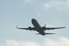 IMG_2633 (wmcgauran) Tags: kbos bos boston airport eastboston aviation airplane aircraft n917nn american americanairlines boeing 737 737800