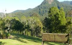 426 Mt Coxcombe Road, Upper Lansdowne NSW