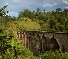 Nine Arch Bridge. (de.bu) Tags: ella srilanka ceylon mountains asia as bridge brcke summer palmen outdoor backpacking