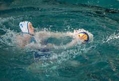 2C040518 (roel.ubels) Tags: len euro league waterpolo sport topsport utrecht uzsc 2016 krommerijn women