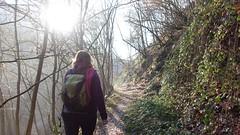 Wandern auf dem Saynsteig
