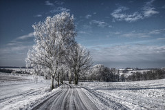 Advent calendar door No. 16 (murtica27) Tags: sachsen outdoor drausen winter christmas saxony white weis weihnacht sky himmel blue birke tree baum schnee snow sony alpha hdr dezemeber dezember countryside landschaft landscape wideangle deutschland germany erzgebirge extreme cold scenery nature