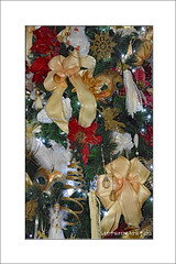A fully dressed Xmas Tree (prendergasttony) Tags: elements nikon d7200 tree christmas xmas gold red white silver frame ribbon mask doll venetian leaves december bows feathers decoratation vacation holiday