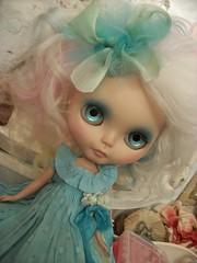 Velvet in blue......