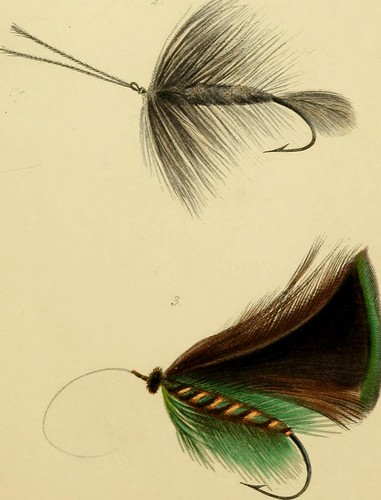 "Image from page 160 of ""The rod and line or, Practical hints and dainty devices for the sure taking of trout, graylings, etc."" (1849)"