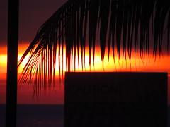 Red Sky At Night (fabbird1964) Tags: nightphotography sunset red sky beach silhouette asia palmtree malaysia penang