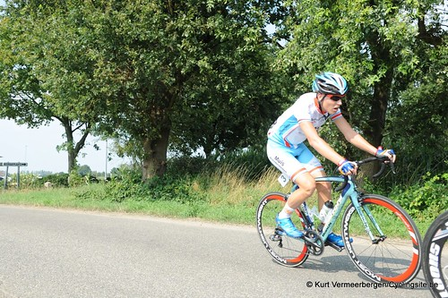 Geel Oosterlo  (124)
