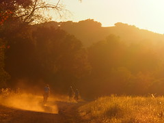 that light tho. (MannyAcosta) Tags: sf sanfrancisco marin bikes walnutcreek artisan overnight rivendell briones bbh mannyacosta fatbike s240 headllands booksandhatchets picturesproveithappened