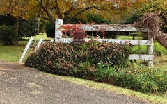 725 Tyringham Road, Dorrigo NSW