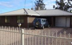 17 Nixon Street, Euston NSW
