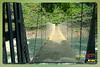 Silent Valley---------------17 (Binoy Marickal) Tags: india green tourism nature water rain kerala mala palakkad evergreenforest treaking silentvalleynationalpark nilgirihills mannarkkad mukkali kuzhur indiabinoymarickal