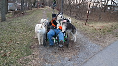 "Zarro Showing Some Love For The WooFDriver • <a style=""font-size:0.8em;"" href=""http://www.flickr.com/photos/96196263@N07/14841611037/"" target=""_blank"">View on Flickr</a>"