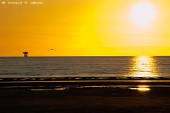 4aug52 (Richard G. Hilsden) Tags: uk england britain lancashire richard southport merseyside 2014 sefton hilsden richardghilsden
