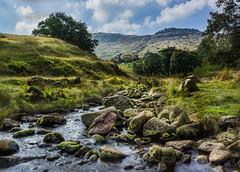 The rocky stream