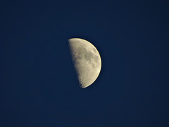 Our Dearest Satellite (José Luis Borbolla) Tags: moon stars solar luna galaxy planet astros universe galaxia satelite universo planetas