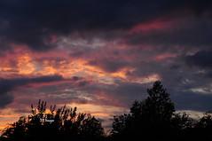 Angry Skies (EJ Images) Tags: uk trees sunset england sky sun slr silhouette clouds suffolk nikon shadows dusk silhouettes dslr setting eastanglia settingsun lowestoft 2014 nikonslr d90 nikondslr pakefield nikond90 dsc0397 18105mmlens ejimages