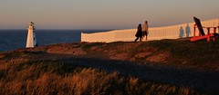 Evening Light at the Cape (Insearchoflight) Tags: lightandshadow eveninglight capespear naturephotos newlight insearchoflight marinephotos nauticalphotos waynenorman