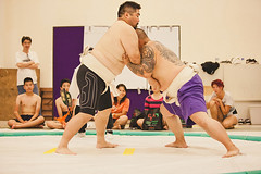 "Sumo Tournament • <a style=""font-size:0.8em;"" href=""http://www.flickr.com/photos/56674563@N06/15063882458/"" target=""_blank"">View on Flickr</a>"