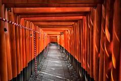 Red Tunnel (Giuseppe Lupo) Tags: travel japan kyoto inari giappone fushimiinari 500px ifttt fusjimi