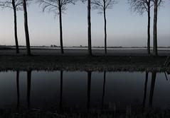 (Michael Degenhart) Tags: blue netherlands amsterdam cellphone mobilephone iphone