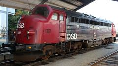 60 years of GM locomotives in Denmark (perryolf) Tags: zug mx odense tog mz dsb lokomotiv nohab my frichs