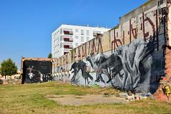 Street art Barcelona 1 (Nijule) Tags: chien streetart graffiti spain nikon chat ruine espagne barcelone catalogna 2014 catalogne d7100 passatgedelamarina