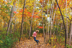 Childhood innocence (Elizabeth Sallee Bauer) Tags: 67yearold horizontal nature autumn beautyinnature boy child colorful fall forest hiking leaves nonurbanscene oneboyonly outdoors outside trail trees